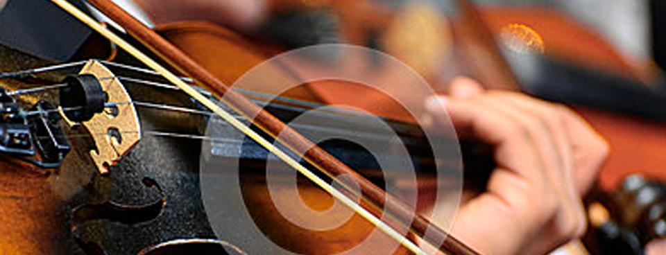 Violin 960