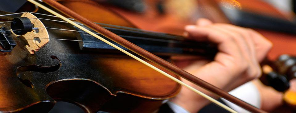 Violin Bowed 2